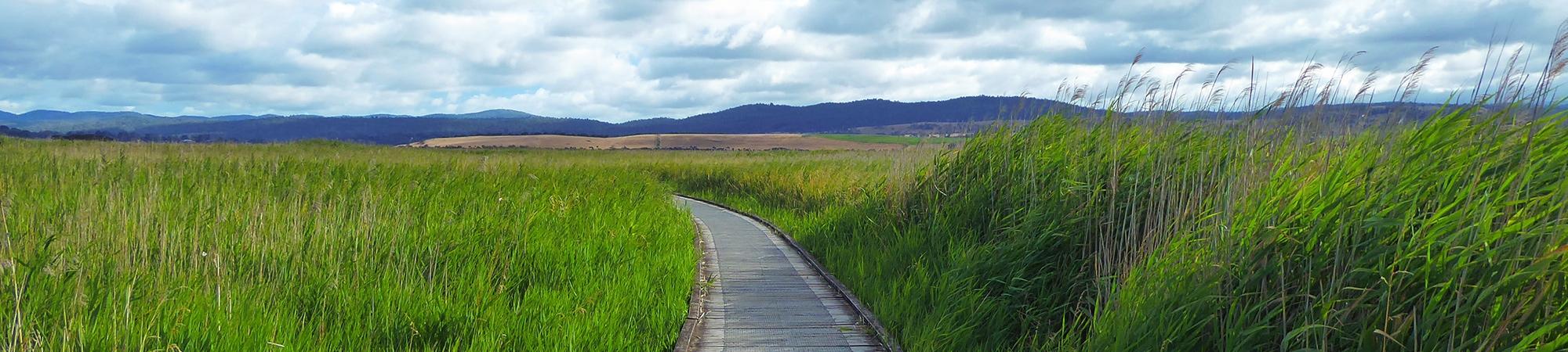 Première étape en Tasmanie: Launceston et ses environs