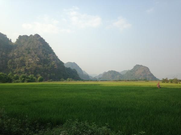 Les rizières d'Hpa an