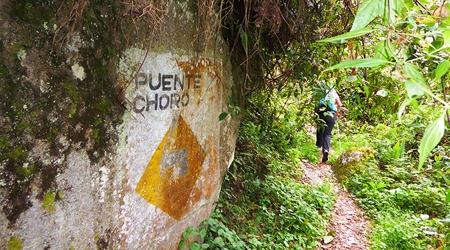 Le trek d'El Choro